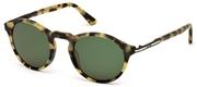 Selecteer om een bril te kopen of de foto te vergroten, Tods Eyewear TO0179-56N.